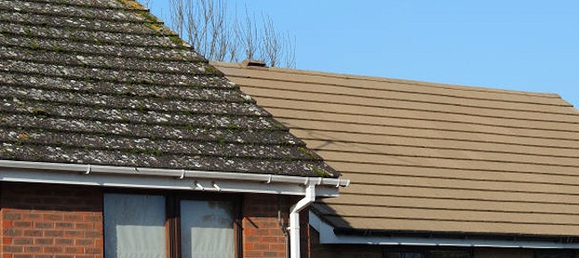 Bromley Roof Cleaning   Moss Removal In Orpington, Beckenham